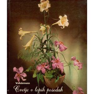Cvetje v lepih posodah